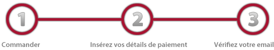 paysteps_trafficanalysis_3_fr.png